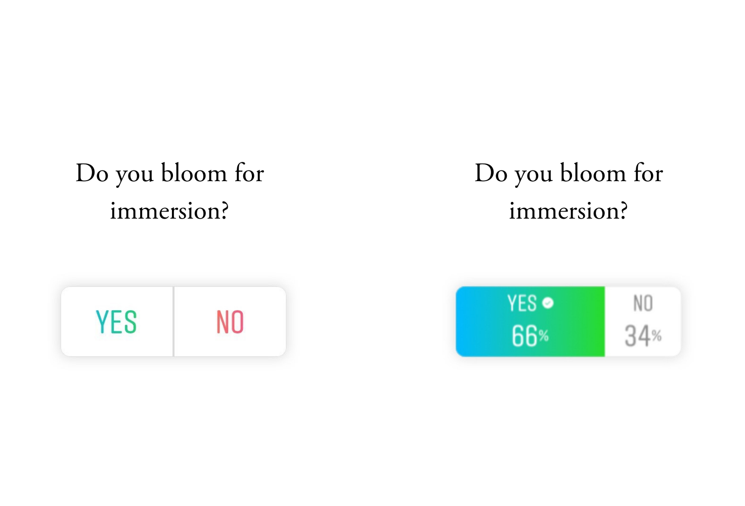 Bloom for immersion poll
